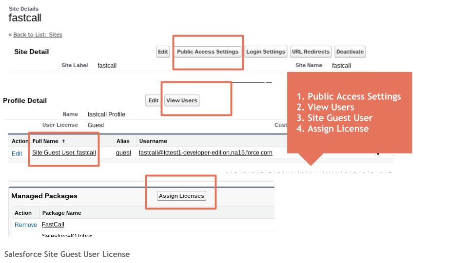 Salesforce Site Guest User License